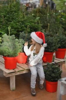 Маленькая девочка выбирает елку на рынке.