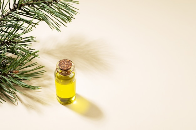 Small glass bottle of essential pine oil with pine branch and shadows on beige background. aromatherapy and spa concept. copy space for text.