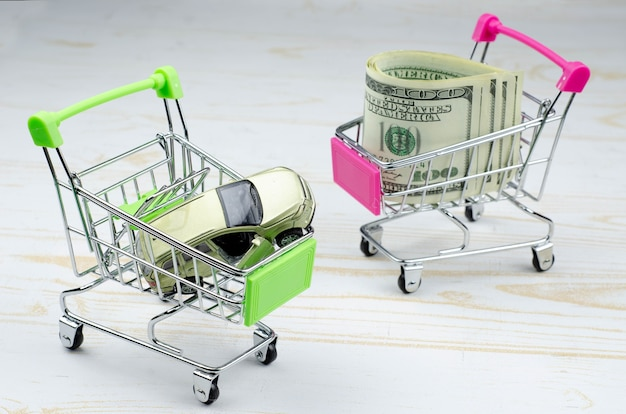 Small green and pink shopping carts with a toy car and 100 dollar banknotes on white wood