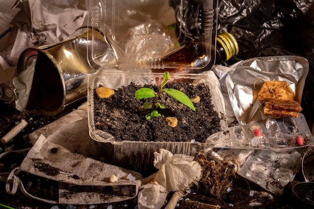 작은 녹색 새싹은 지구 오염이라는 개념의 쓰레기와 흙 속에서 살아남기 위해 노력하고 있습니다