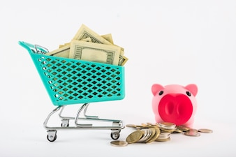 Small grocery cart with money and piggy bank
