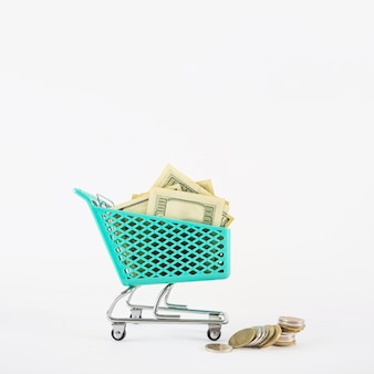 Small grocery cart with money