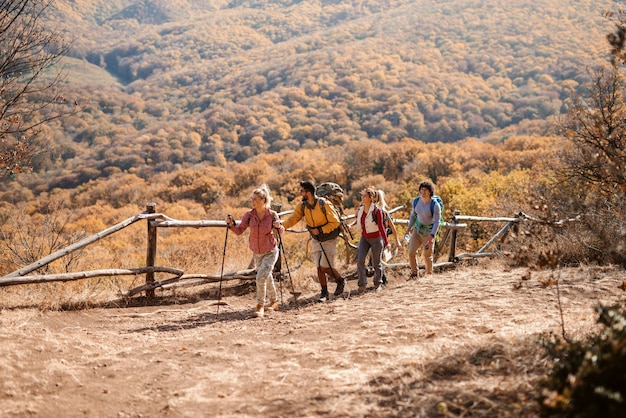 Small group of hikers exploring nature in the autumn while walking in the raw. in background mountains and forest