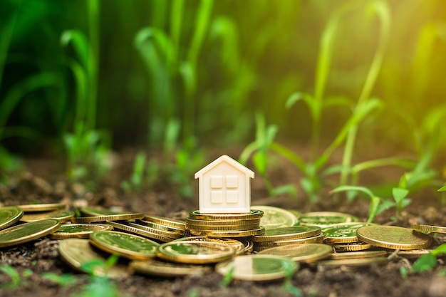 Small house on stack of golden coins in the garden. - concept of investment property.