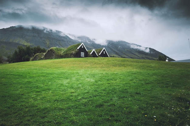 Small houses in a green field with dark sky