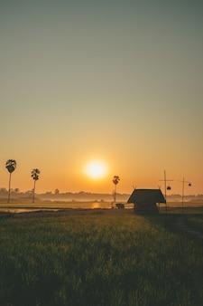 平和をコンセプトに日の出のある田んぼの小さな小屋