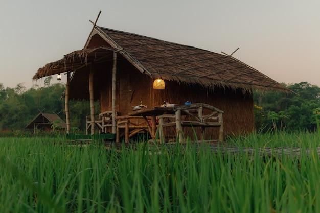 Небольшая хижина на рисовом поле с восходом солнца