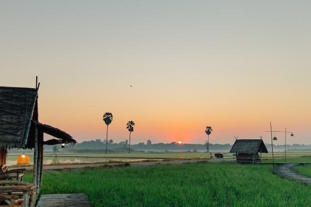 日の出のある田んぼの小さな小屋