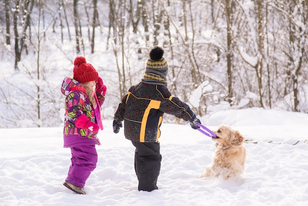 Small kids play with cocker spaniel in winter forest