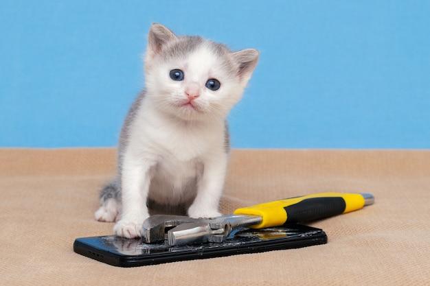 壊れた電話とレンチの近くの小さな子猫。携帯電話の修理