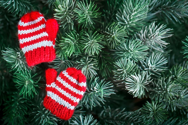 Small knitted mittens on the christmas tree