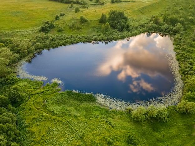 空と雲が映る小さな湖湖の周りの緑の草や木々