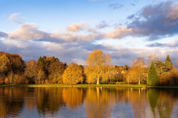 ベルギーの秋の曇りの日に色とりどりの木々と森に囲まれた小さな湖。秋のゴージャスな公園のパノラマ、心地よい暖かい日差しのある風光明媚な風景。水の中での木の反射。
