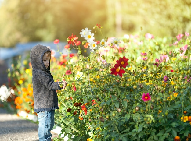Small little boy playing with flowers