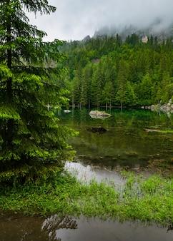 Franch alps의 작은 산림 호수 (안개가 낀 여름 아침)