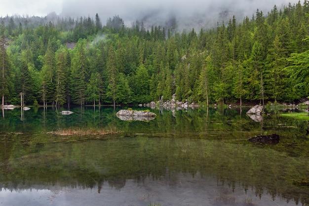 프랑스 알프스의 작은 산림 호수 (안개가 낀 여름 아침)