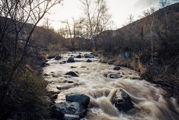丘と夕日を背景に岩だらけの土手に囲まれた小さな山の川。海岸の乾いた草と葉のない木。春先、融雪。自然な背景。