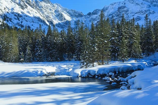 눈이 내리는 작은 계류는 가장자리와 전나무 숲에서 표류합니다.