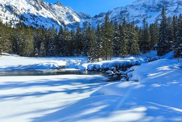 가장자리와 전나무 숲에 snowdrifts와 작은 산 스트림.