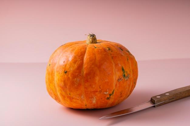 ナイフでピンクに小さなオレンジ色の新鮮なカボチャ