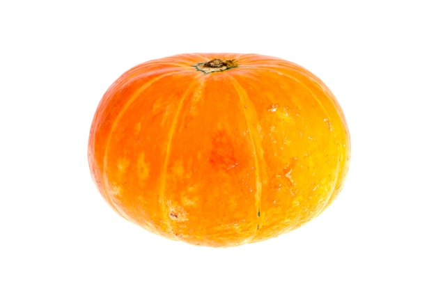 Small orange pumpkin isolated on white background.