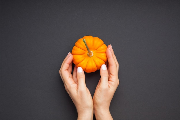 Small orange pumpkin woman hands black background