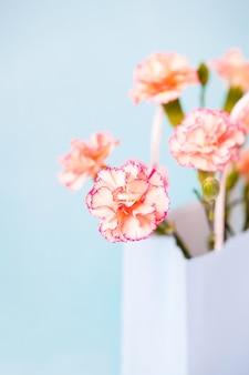 분홍색 테두리가있는 작은 복숭아 카네이션 꽃