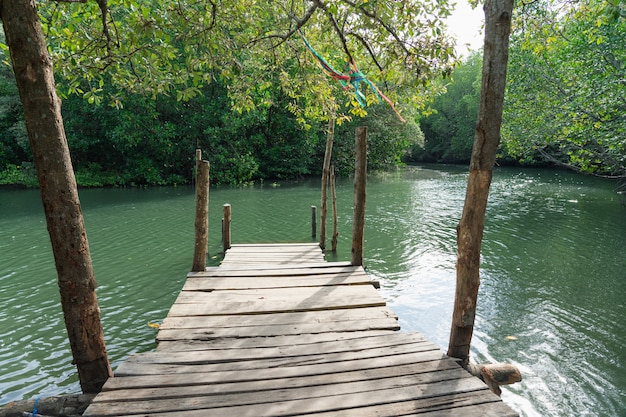 Small pier going out to the mangrove forest, looking at it and giving it peace and relaxation
