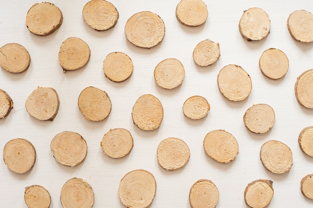 Small pine wooden circles pattern. wooden saw cut isolated on white background
