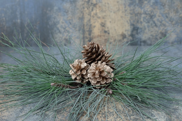 Small pinecones on a branch of green tree on marble background. high quality photo