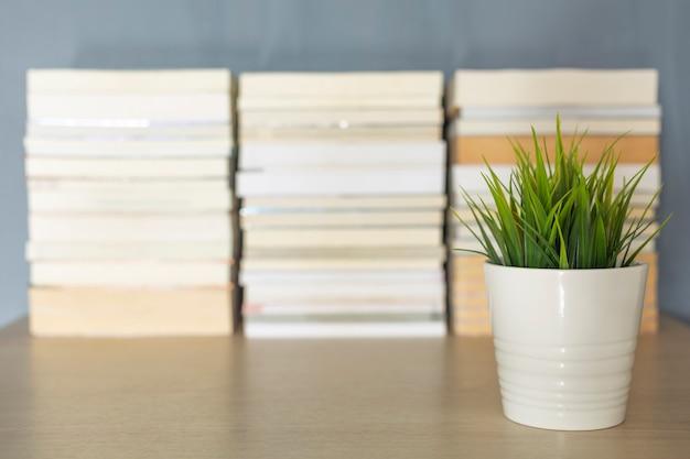 Небольшое украшение завода переднего плана стека книги размытия на столе
