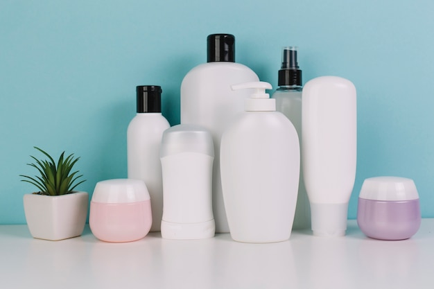 Small plant near various cosmetics bottles