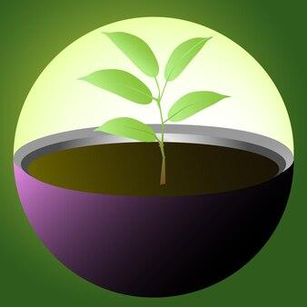 유리 구체로 보호되는 작은 식물