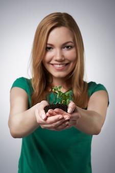 女性の手に小さな植物