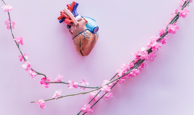 Small plastic human heart with flowers on table