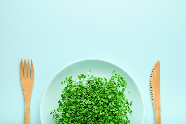 Небольшая порция микрозелени на тарелке. понятие о диете и потере веса.