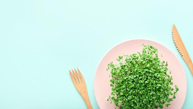 Небольшая порция микрозелени на розовой пластине. понятие о диете и потере веса.
