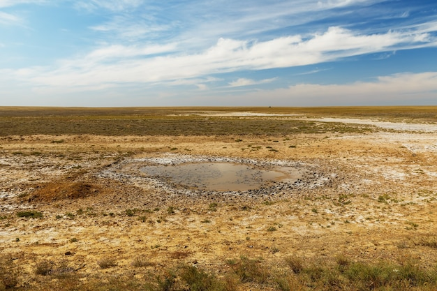 Small puddle in the steppe, kazakhstan. drying mud puddle