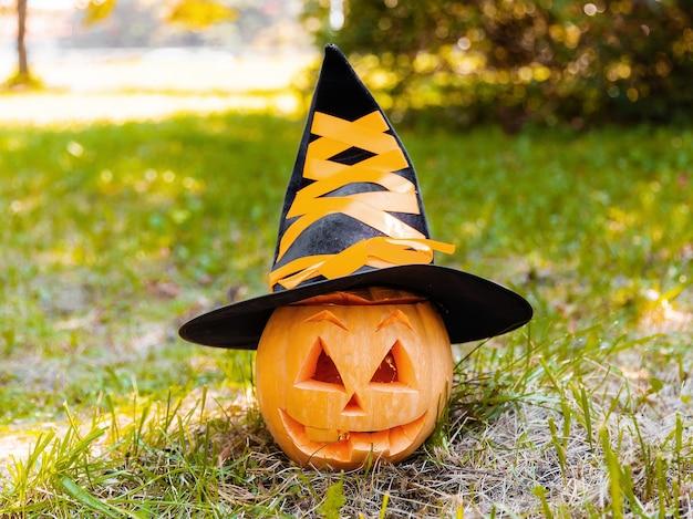 잔디에 마녀 모자에 작은 호박. 할로윈에 대한 귀여운 재미있는 개념.