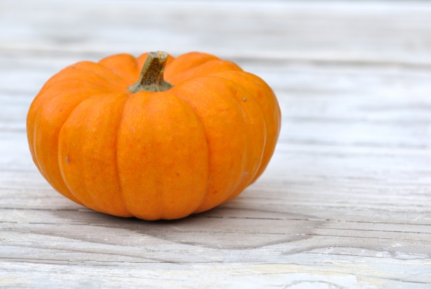 Small pumpkin on light wooden table