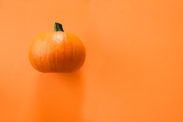 Small pumpkin on orange
