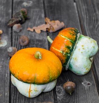 Piccola zucca sulla parete di legno, autunno