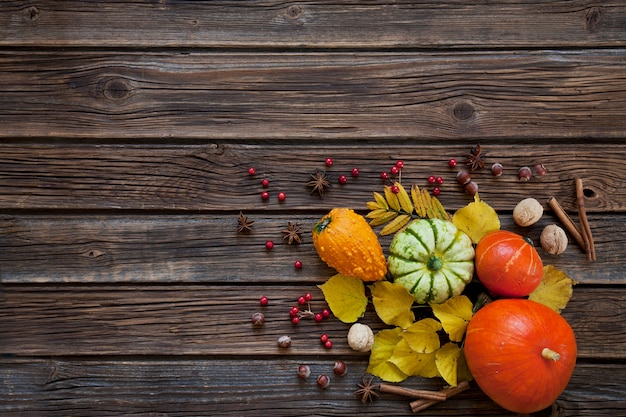 Small pumpkins, nuts, apples and berries of mountain ash with autumn leaves
