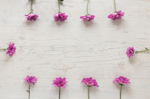 Small purple flowers scattered on table