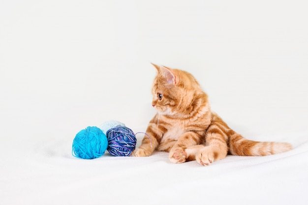 A small red-haired kitten on a light bed lies with threads.