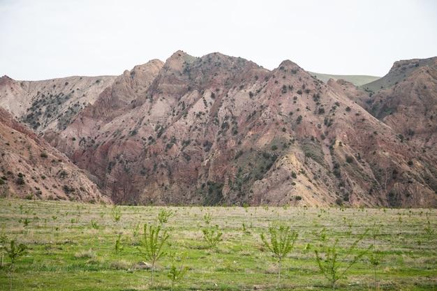 アルメニアの小さな赤い山