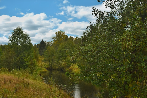 A small river in the autumn forest