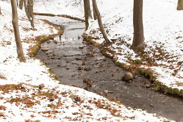 Небольшая река в зимний сезон. берега засыпаны выпавшим снегом. фото крупным планом, небольшая глубина резкости. беларусь