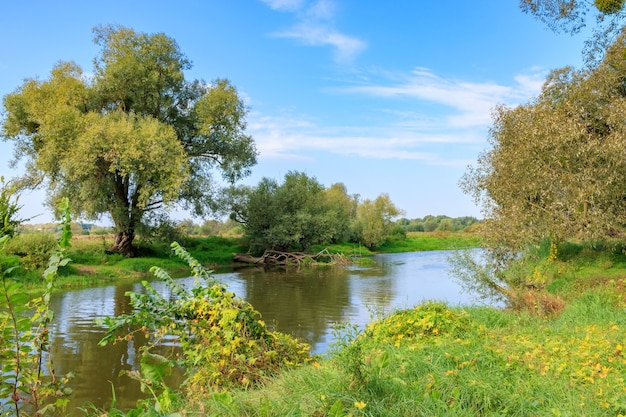 Небольшая река с зелеными деревьями и кустами на берегу против голубого неба в солнечное осеннее утро. речной пейзаж