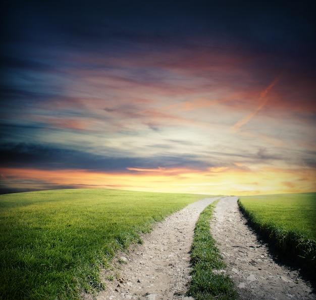 Небольшая дорога в сельской местности с зеленой травой на закате